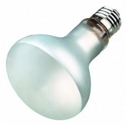 Verlichting met UV-B - Kwikdamplamp ProSun Mixed D3