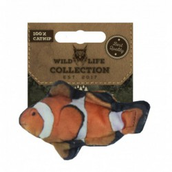 Wild Life Cat Clownfish