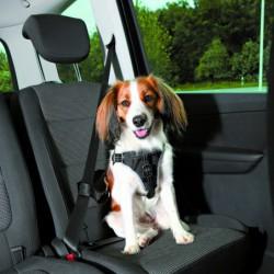 Auto - Auto-Tuig Dog Comfort