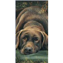 Hunter Wellies - Labrador...