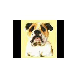 Engelse Bulldog Keramische...