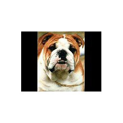 Engelse Bulldog bagagelabel