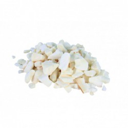 Voeding en mineralen - Sepia-Stukjes