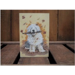 Old English Sheepdog /...