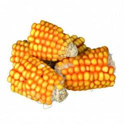 Snacks - PURE NATURE Maïskolfstukken