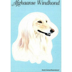 Afghaanse Windhond Sticker...