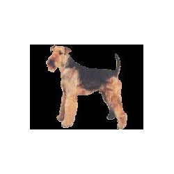 Airedale Terrier ministicker