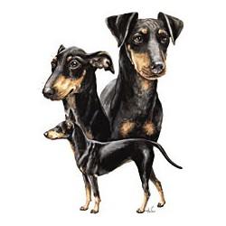 Manchester Terrier T-shirt...