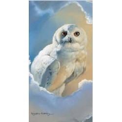 Owl Magic Slimcard