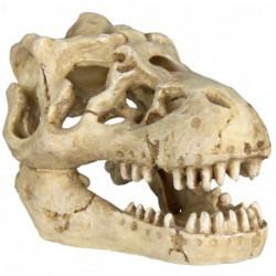 Assortiment schedels