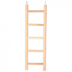 Ladders ed - Houten ladder