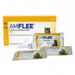 Amflee 50 mg Spot-on Kat