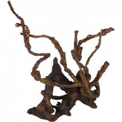 Azalea Wortels 13cm