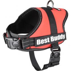 Best Buddy Pluto harnas rood