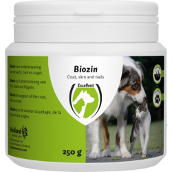 Biozin 750 gram