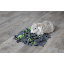 Royal Canin Mini Schnauzer Adult 25 7.5kg